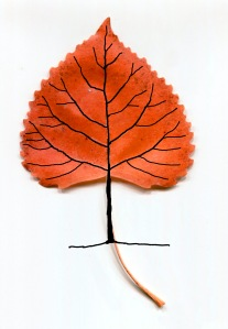 leaf tree drawing2